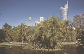 Kings Park Botanic Garden by Australia U0027s Most Wonderful Botanical Gardens