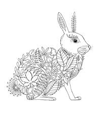artist johanna basford enchanted forest coloring pages garden