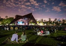 Backyard Theater Ideas Outdoor Theater Date Bliss First Date Ideas