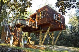 treehouse homes for sale tree houses from the past into the future o livable tree houses tree
