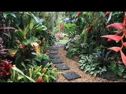 Tropical Plants For Garden - 21 flower and plants to make tropical gardens read the
