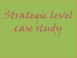 strategic level case study exam scs resources study cima