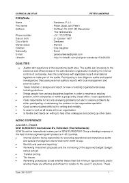 curriculum vitae layout 2013 nba cv peter sanderse