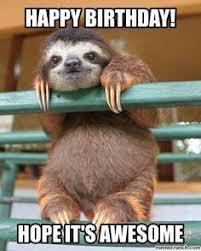 Funny Animal Birthday Memes - birthday sloth happy birthday meme pinterest sloth birthdays