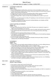 sle resume for business analysts duties of executor of trust ecommerce resume sles velvet jobs