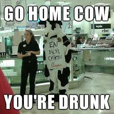 Go Home Meme - 35 most funny cow meme pictures and photos