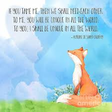 best 25 fox quotes ideas on be brave quotes brave