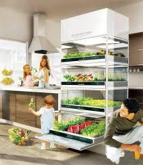 potager pour cuisine un potager dans la cuisine du futur en matière de fines herbes et