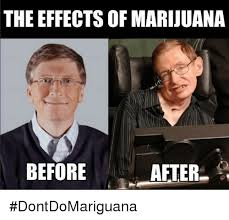 Marijuana Overdose Meme - the effects of marijuana before after dontdomariguana marijuana