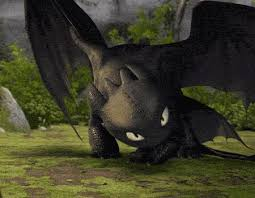 150 train dragon images toothless