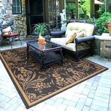 Large Indoor Outdoor Area Rugs New Cheap Outdoor Area Rugs Startupinpa