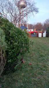 tree sale walmart artificial trees preit