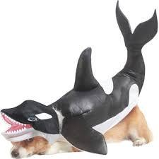 Dog Shark Halloween Costume Halloween Hounds Loss Dress Pet