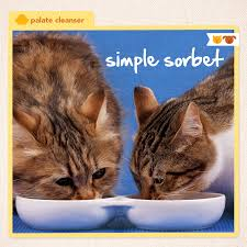 homemade thanksgiving cookies make this simple 3 ingredient sorbet recipe that u0027s purrfect for