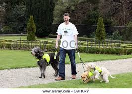 Dog Blinds Roy Keane Launches Irish Guide Dogs For The Blind U0027s 2007