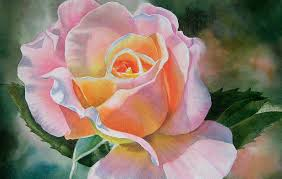 Peach Roses Pink And Peach Rose Bud Painting By Sharon Freeman