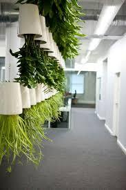 Interior Plant Wall 127 Best Zieleń W Biurze Green Offices Images On Pinterest