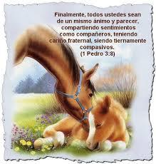 imagenes de mensajes biblicos cristianos tarjetas cristianas con texto biblicos tarjetas cristianas con