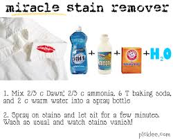 How To Remove Rug Stains 10 Diy Cleaners Miracle Stain Remover Oven Cleaner Shower