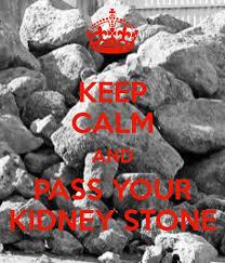 Kidney Stones Meme - kidney stones meme 28 images 1000 ideas about kidney stones