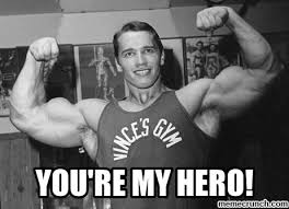 Hero Meme - re my hero