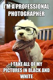 Meme Photographer - i m a professional photographer i take all of my pictures in black