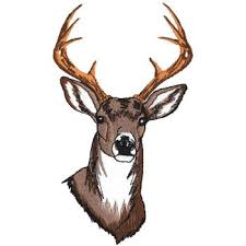 deer head white tail deer head embroidery designs machine embroidery designs
