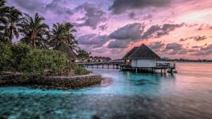 exotic wallpapers wallpaper studio 10 tens of thousands hd and