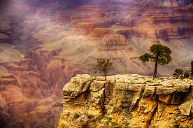 Arizona nature activities images Top 10 family activities in grand canyon national park jpg
