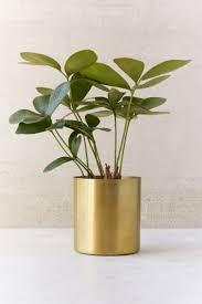 Plant Vase Mod Metal 3