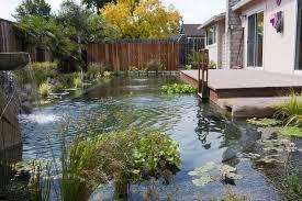 a green gem u2013 mcdonald pools