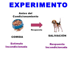 conductismo animal orígenes del conductismo mind42 free online mind mapping software