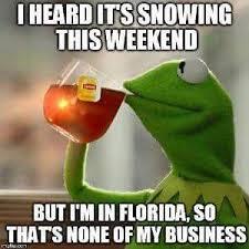 Florida Winter Meme - the 10 best florida winter memes i love south florida i live in