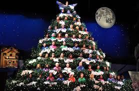 singing christmas tree best of 6 singing christmas tree leigh brown