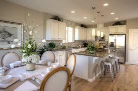 Gourmet Kitchen Designs Villa Vista What S In Our Gourmet Kitchens Denova Homes Blog