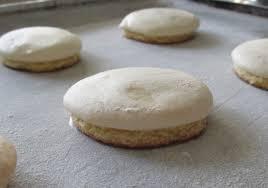 german anise cookies recipes food cookie recipes