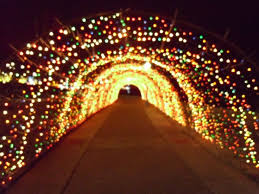 59 best clarksville tn images on pinterest tennessee christmas