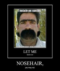 Guy With Mustache Meme - the 25 best mustache quotes ideas on pinterest moustaches