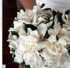 Popular Bridal Bouquet Flowers - 12 popular wedding flowers tipstruly engaging wedding blog