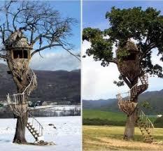 cool tree house houses kits build treehouse sale playhouses