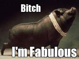 meme creator bitch i m fabulous