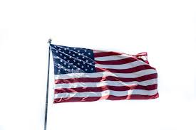 Flag Of The United States Of America United States Of America Flag Free Stock Photo Public Domain