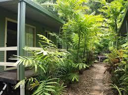 kipara tropical rainforest retreat holiday houses airlie beach