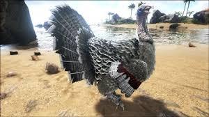 turkey official ark survival evolved wiki
