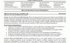 Resume Objective Account Manager Sample Resume Account Manager Advertising Executive Sample Resume