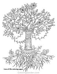coloring pages for adults tree tree trunk coloring sheet free coloring pages