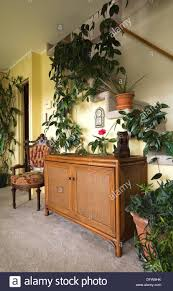 antique upholstered chair and wicker cabinet with house plants in