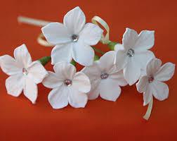 Stephanotis Flower Stephanotis Etsy