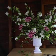 51 best my online flower class images on pinterest plants