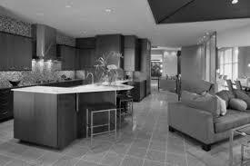 homes with open floor plans open floor plan homes with modern kitchen countertops dream home
